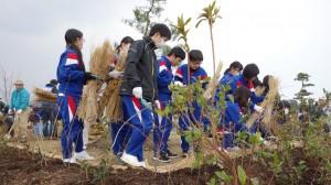 写真6 木を植える中学生